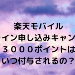 楽天UN-LIMITオンライン申し込みキャンペーン3,000ポイントはいつ付与されるの?